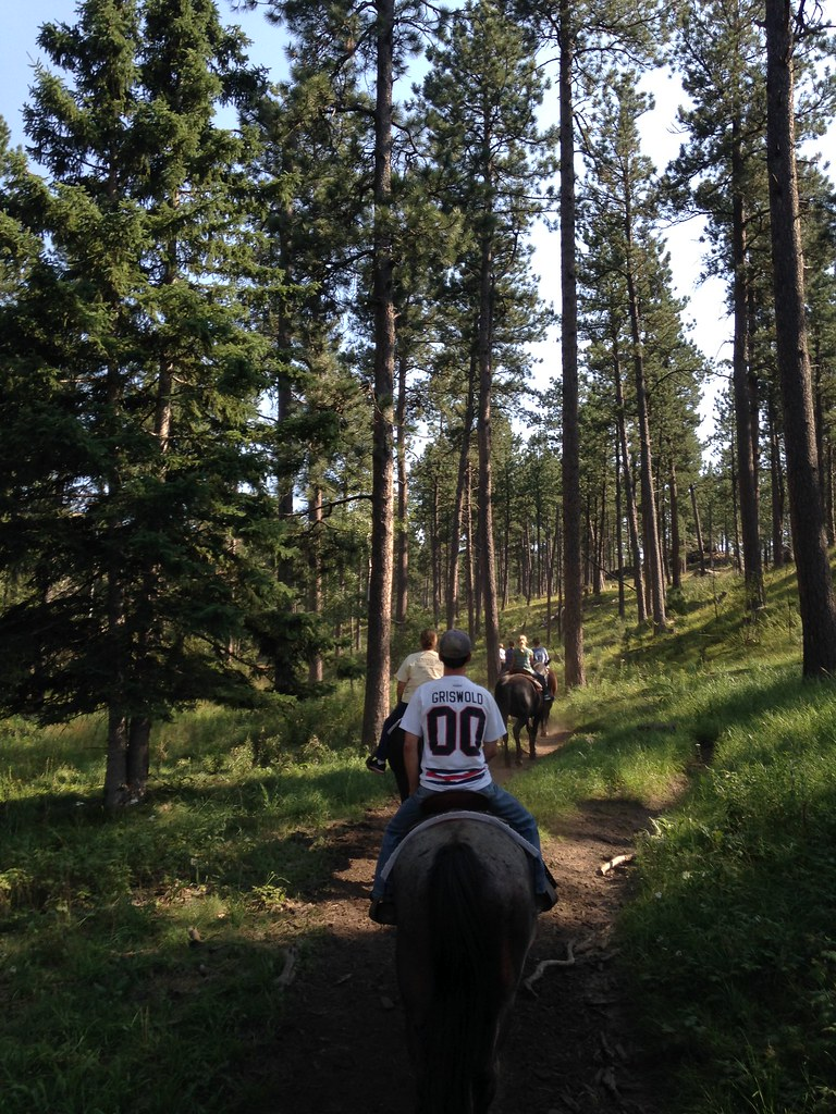 Black Hills Horse Trail Riding